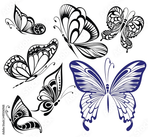 """""""Collection black and white butterflies.Tattoo design ..."""