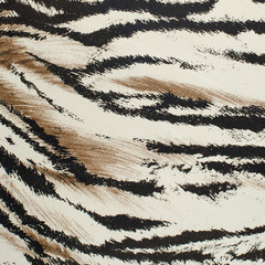 Tiger skin artificial pattern