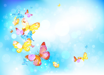 Canvas Prints Butterflies Butterflies