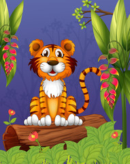 A tiger sitting in a wood