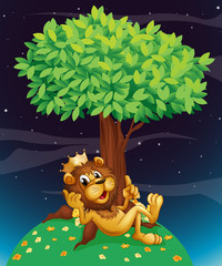 A king lion under a tree