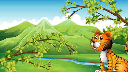 A tiger in a mountain scenery