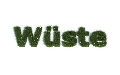 """Wüste Serie """"Schriften aus realist. Gras"""" Sprache DE"""