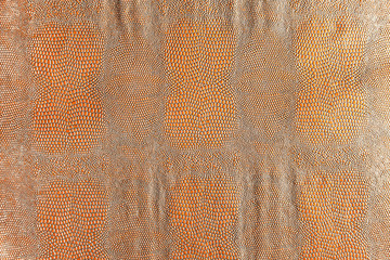 Hell brown snakeskin texture