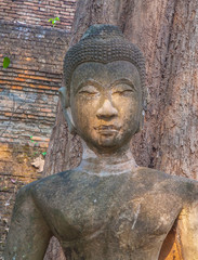 Head Buddha statue in Wat Umong