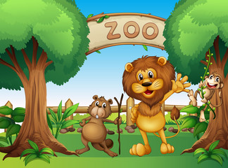 A monkey, beaver and a lion in the zoo