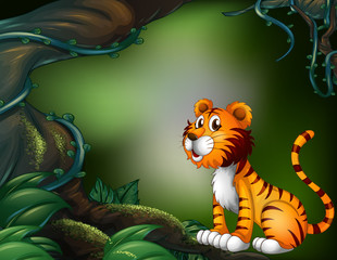 A tiger in the dark forest