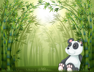Canvas Prints Bears A panda in the bamboo forest