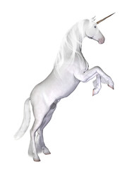 Unicorn, isolated on the white background