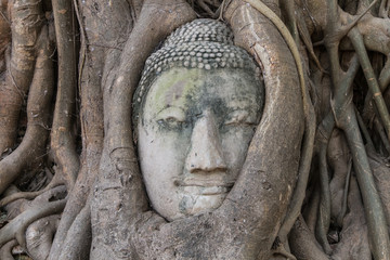 Fotomurales - Buddha face