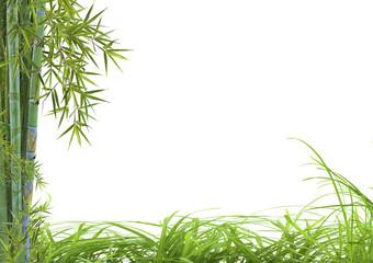 décor asiatique détente bambou herbes