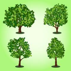 Vector trees set