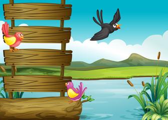 Poster de jardin Oiseaux, Abeilles Birds near a blank wooden signage