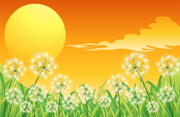 Bright sunset scenery