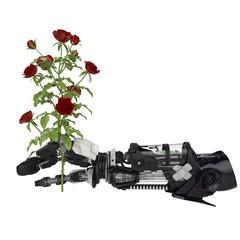 Flower Robotics