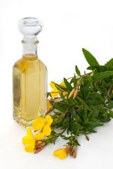 Nachtkerzenöl mit Blüten