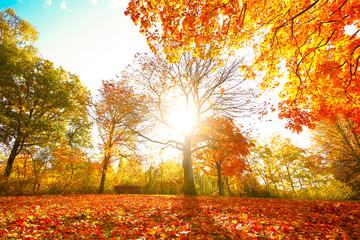 Bunte Herbststimmung
