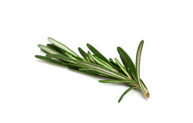 A sprig of fresh rosemary isolated on white background
