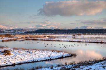 Winter white Snowy scenes around Snowdonia