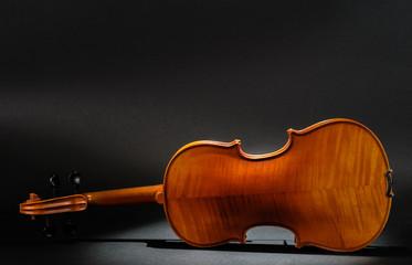 Violin rear view