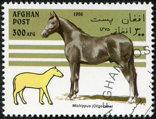 stamp printed in Afghanistan showing prehistorical horse