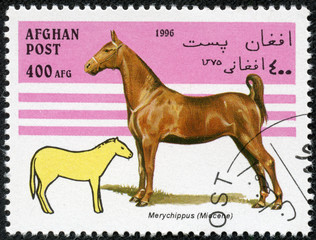 stamp printed in Afghanistan showing prehistorical horse