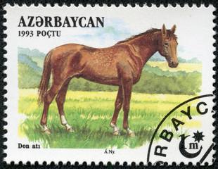 stamp  shows a brown, Akhal-Teke Akhaltekin breed horse