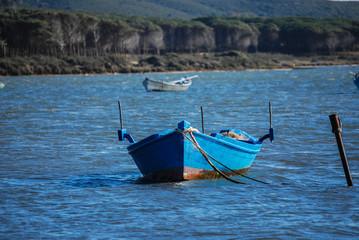 Bruncuteula, Sardegna