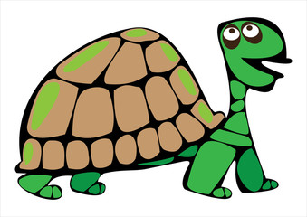 vector cartoon turtle isolated on white background