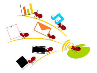 Red ants wireless lan teamwork illustration