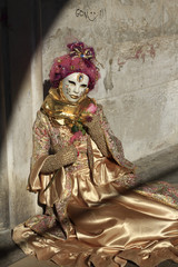 Garden Poster Brown carnevale venezia 2013 maschere antiche