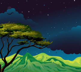A starry evening