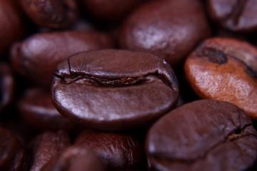 Nahaufnahme einer Kaffeebohne; mehrerer