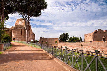 Fototapete - Street beside palatine stadium in palatine hill at Rome