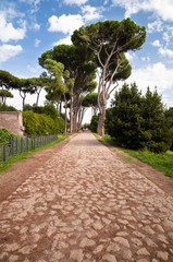 Fototapete - Stone street leading to trees in Palatine Hill at Rome