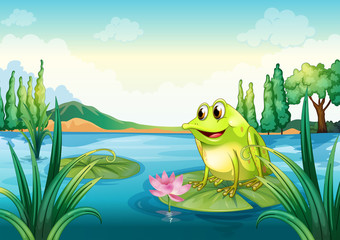 Printed roller blinds Submarine A frog at the river