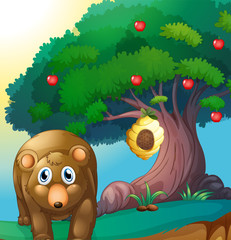 Wall Murals Bears A bear and an apple tree with a beehive