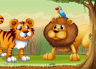 A tiger, a lion and a parrot