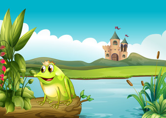 Foto op Plexiglas Rivier, meer A frog with a crown
