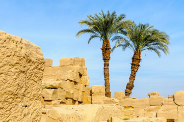 Two palm trees and blocks of stone of the Karnak temple in Luxor, Egypt.