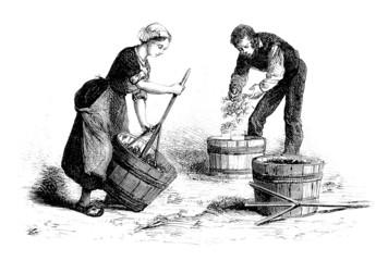 Destemming Grapes - Egrapper le Raisin - 19th century