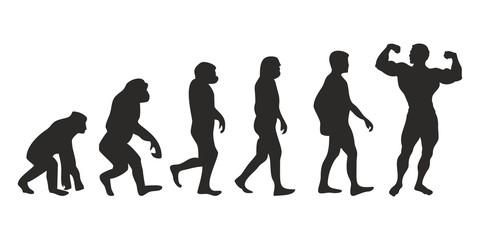 Vom Affen zum Bodybuilder (Menschen)