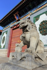 stone lion of china