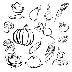 vegetables icon set sketch