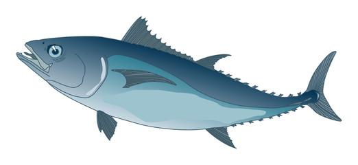 blue tuna