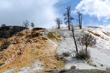 calcare e zolfo sulle rocce a Mammoth Hot Springs