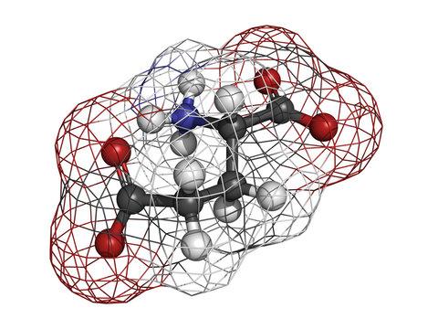 Glutamic acid (Glu, E, glutamate) amino acid, neurotransmitter a