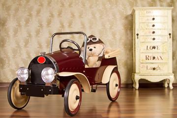 teddybär im auto