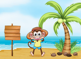 A monkey at the beach and the empty board