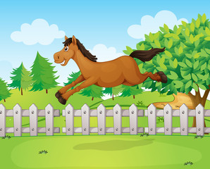 A horse jumping over the fence